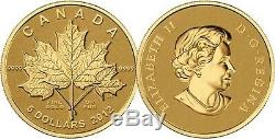 2012 Gold'Maple Leaf Forever' 1/10oz $5 Pure Gold Coin. 9999 Fine