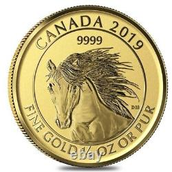 2019 1/4 oz Gold Canadian Wild Horse Reverse Proof Coin. 9999 Fine (Sealed)