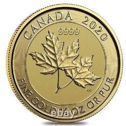 2020 1/4 oz Canadian Twin Maple Leaf Gold Coin. 9999 Fine BU (Sealed)