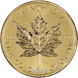 Canada Gold Maple Leaf 1 oz $50.9999 Fine Random Year Three (3) Coins